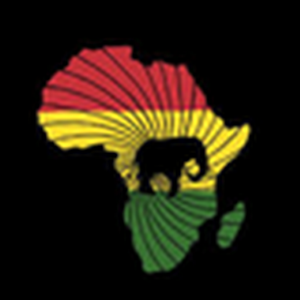 Africa guides