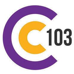 C103 Cork - North