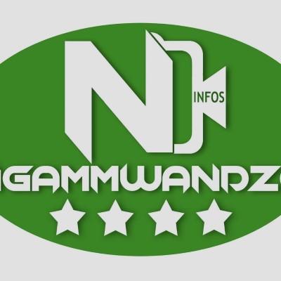 Ngammwandeo Infos