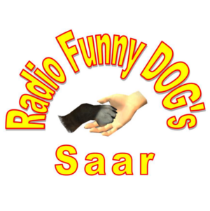 Funny Dogs Saar